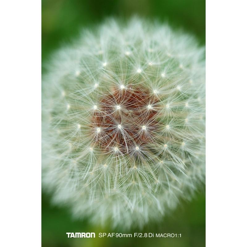 Tamron SP AF 90мм f/2.8 Di Macro объектив для Canon