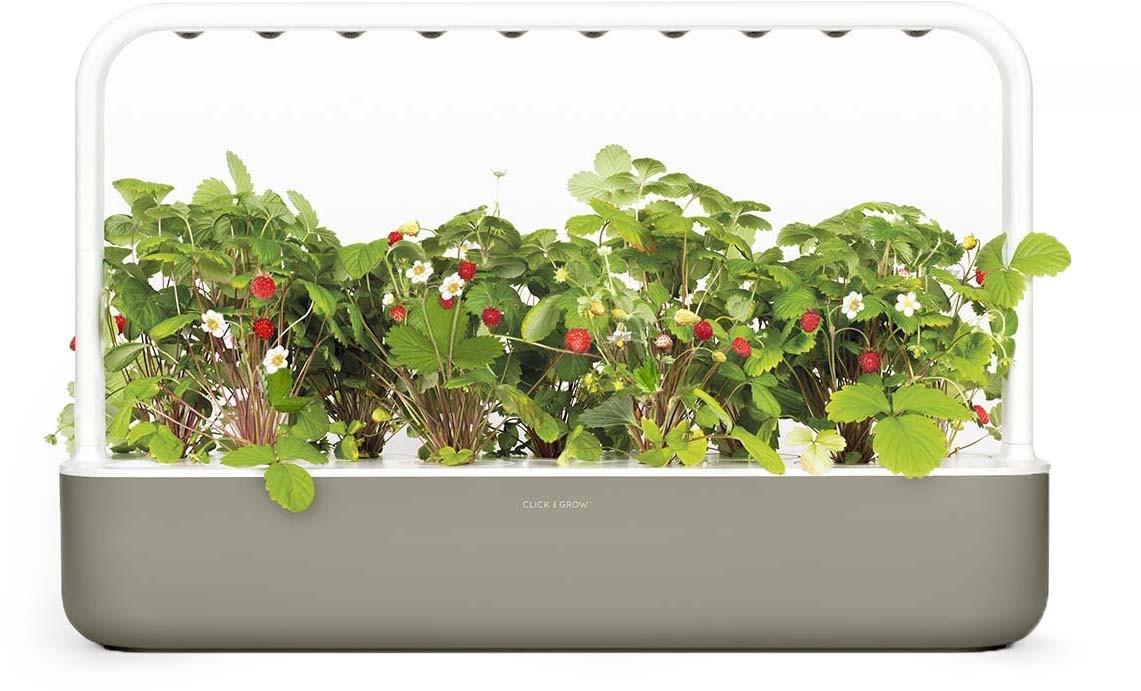 Click & Grow Smart Garden 9, beež