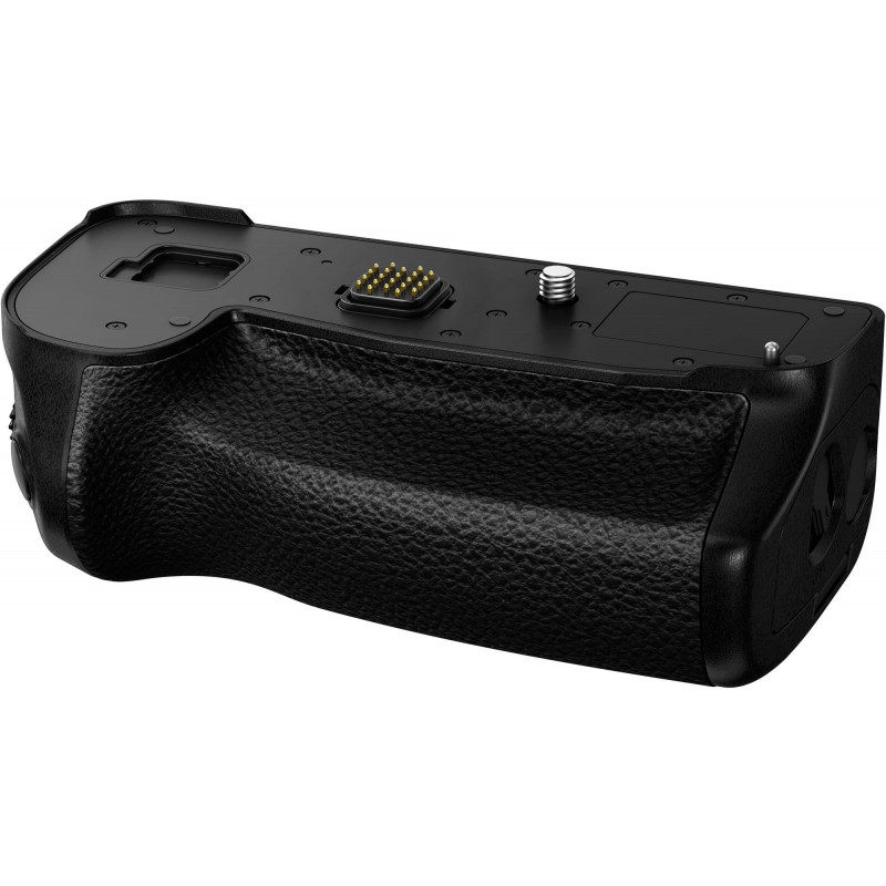 Panasonic battery grip DMW-BGG9