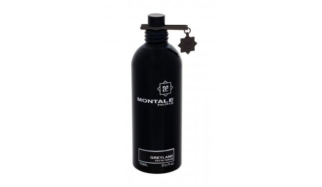 Montale Paris Greyland Eau de Parfum (100ml)