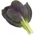 Click & Grow Smart Garden refill Punane Pak Choi 3tk