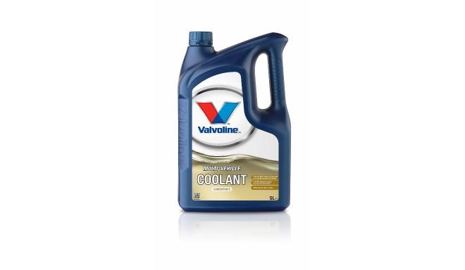 Jahutusvedelik Multi-Vehicle Coolant kontsentraat 5L, Valvoline