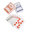 Pokeri kaardid Spartan