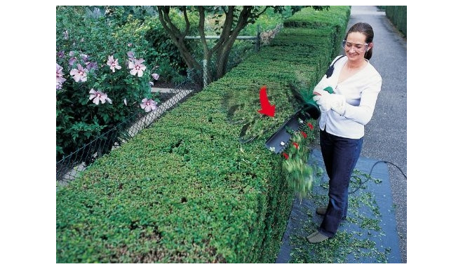 Bosch Electric hedge trimmer AHS 55-16 green
