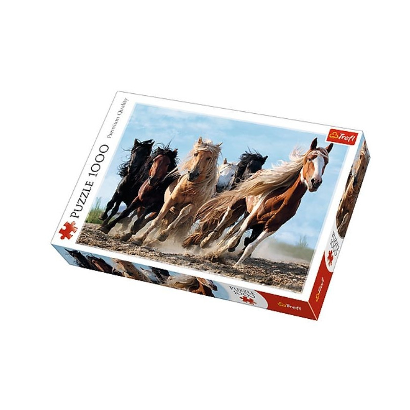 1000 ELEMENTS Galloping horses