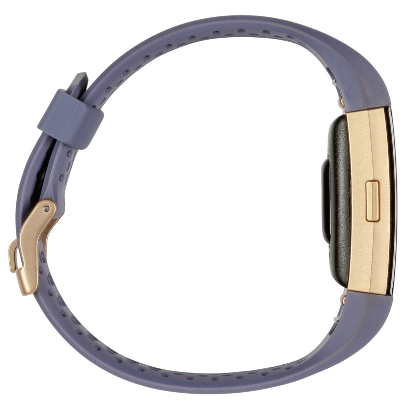 Fitbit Charge 2 Special Edition Small Bluegreyrosegold