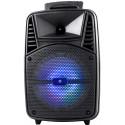 Omega Bluetooth kõlar Tweeter Karaoke OG84 (44907)
