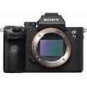 Sony a7 III + FE 55mm f/1.8