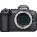 Canon EOS R6 + RF 24-105mm STM Kit