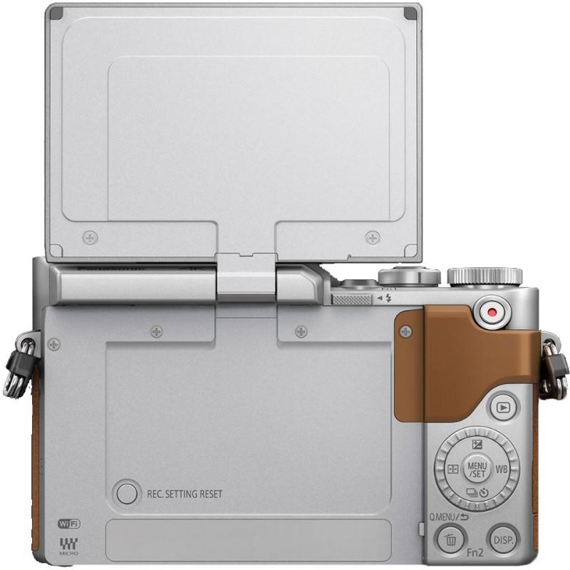 Panasonic Lumix DC-GX800 + 12-32mm Kit, pruun