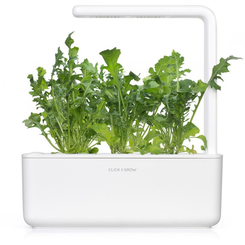 Click & Grow Smart Garden refill Arugula 3pcs