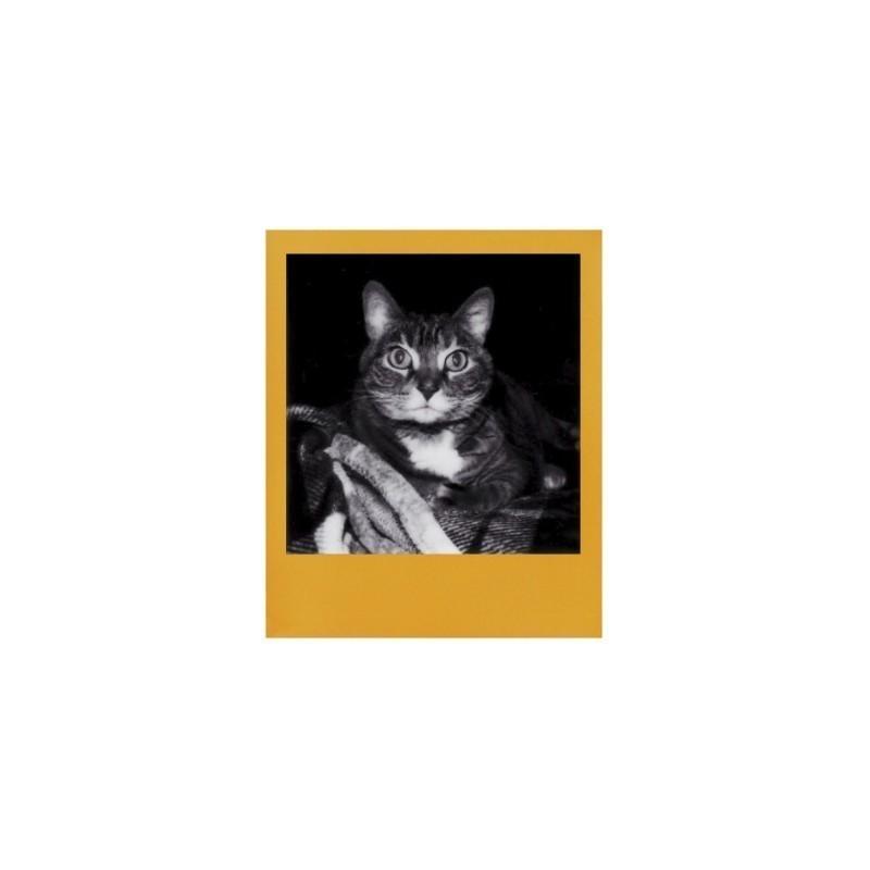 Polaroid 600 B&W Color Frame