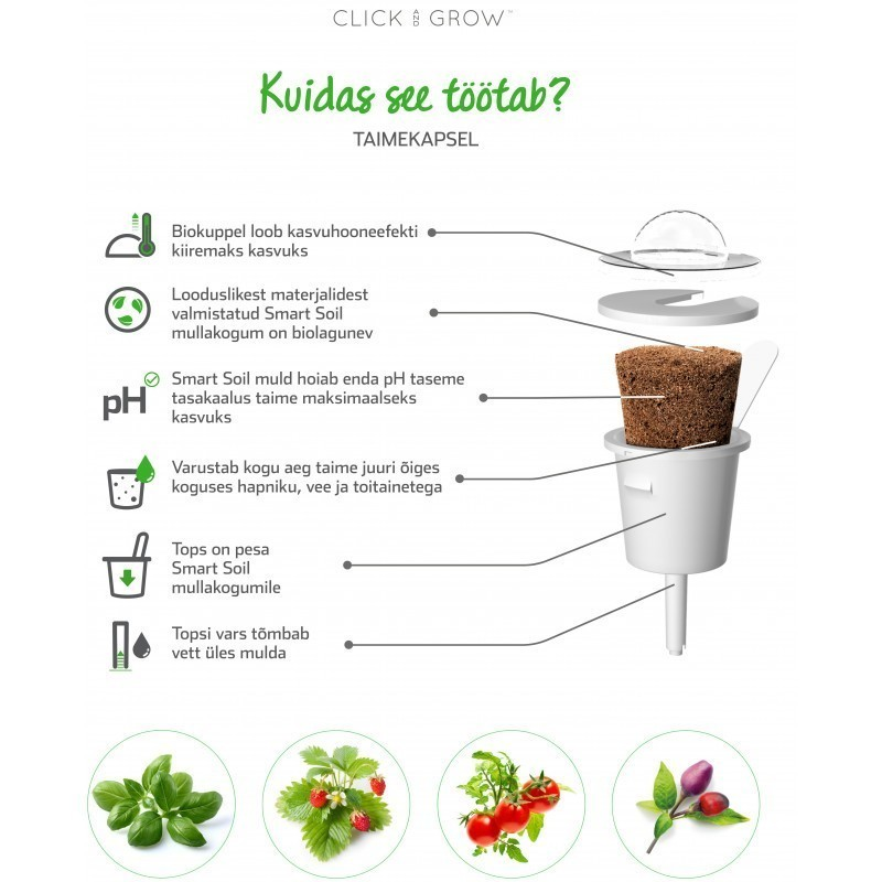 Click & Grow Smart Garden refill Minitomat 3tk