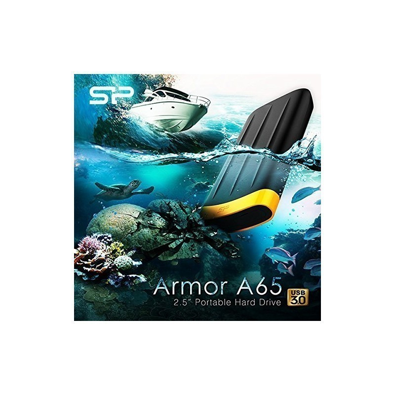 Silicon Power Armor A65 2TB, black